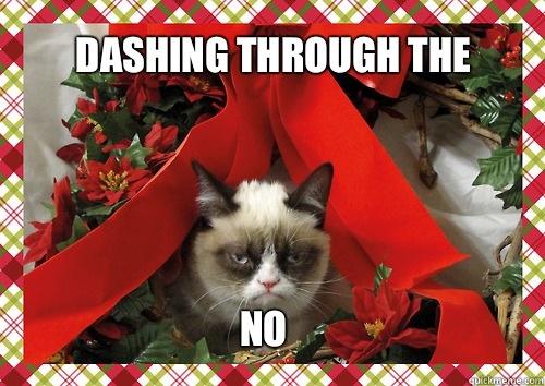 dashing thru the no