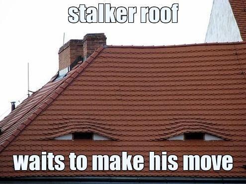 stalkerroof