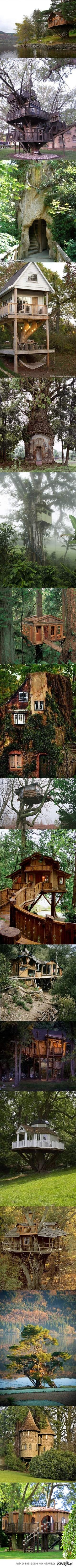 Epic tree houses