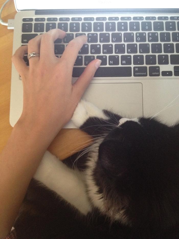 Helping me write a novel