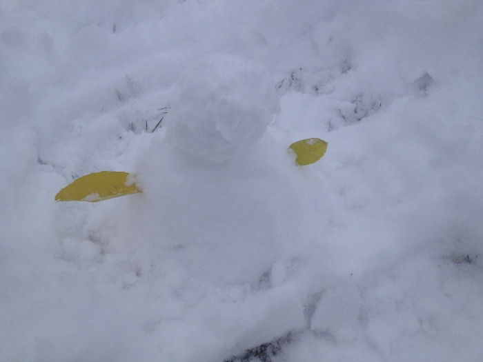 We made a snowman!