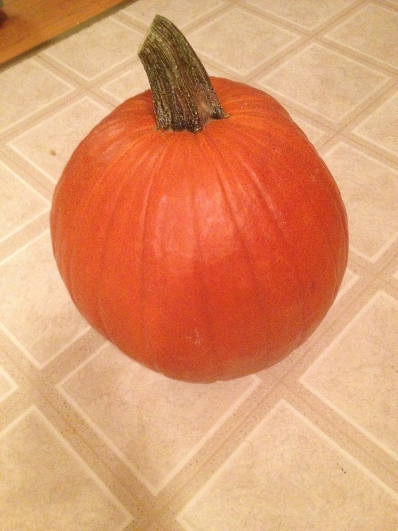 The Start of the Pumpkin